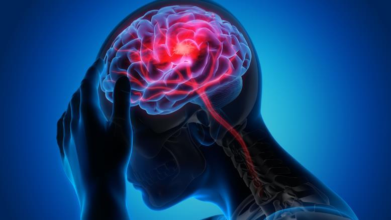 حواس الإنسان الخمستلعبدورًا رئيسيًا في تعديل الذاكرة، حيث يمكن أن تتحول رائحة إلى عوامل تؤثر على هذه الذاكرة(غيتي)