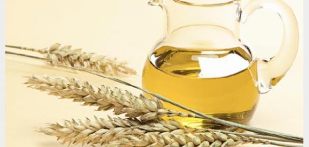 صورة كيفية استخدام جنين القمح